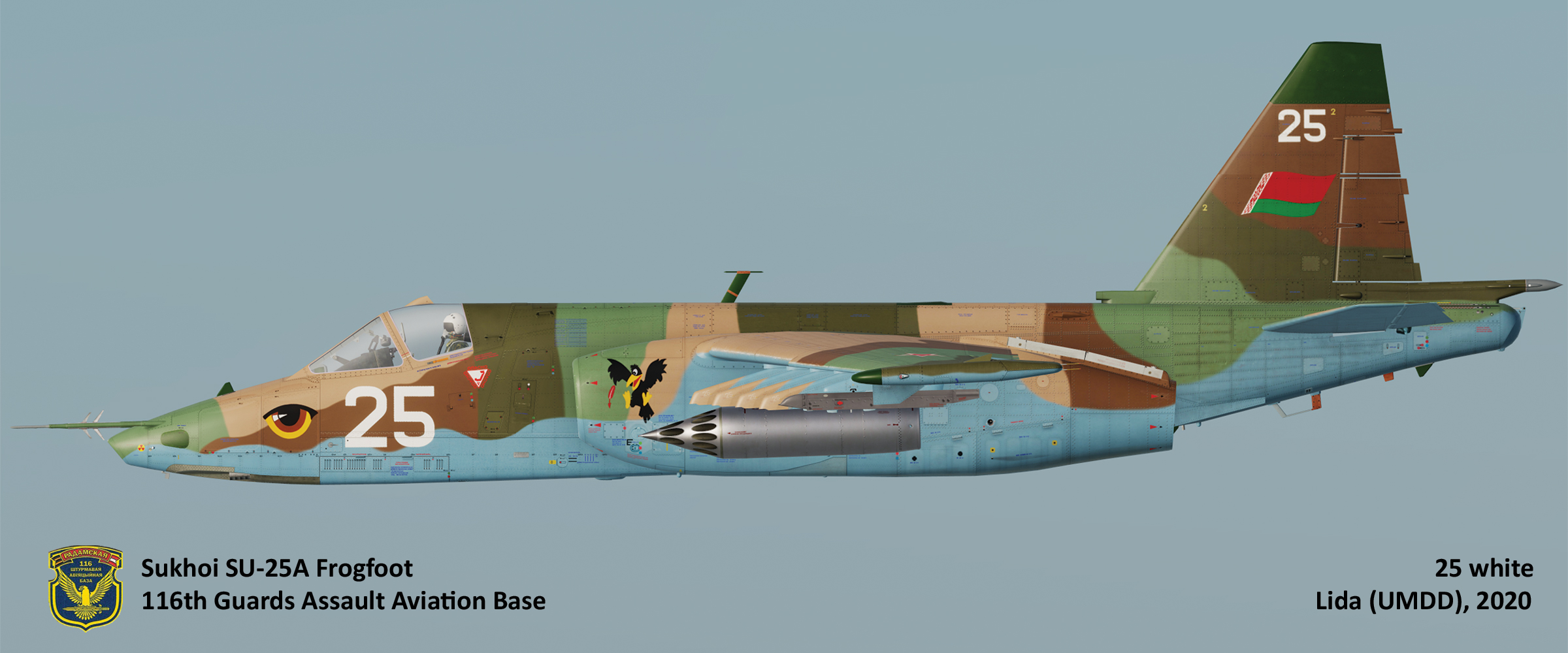 Su-25 Belarus Air Force