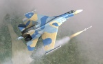 Ukranian SU-27 Low-Viz Fictional Skin