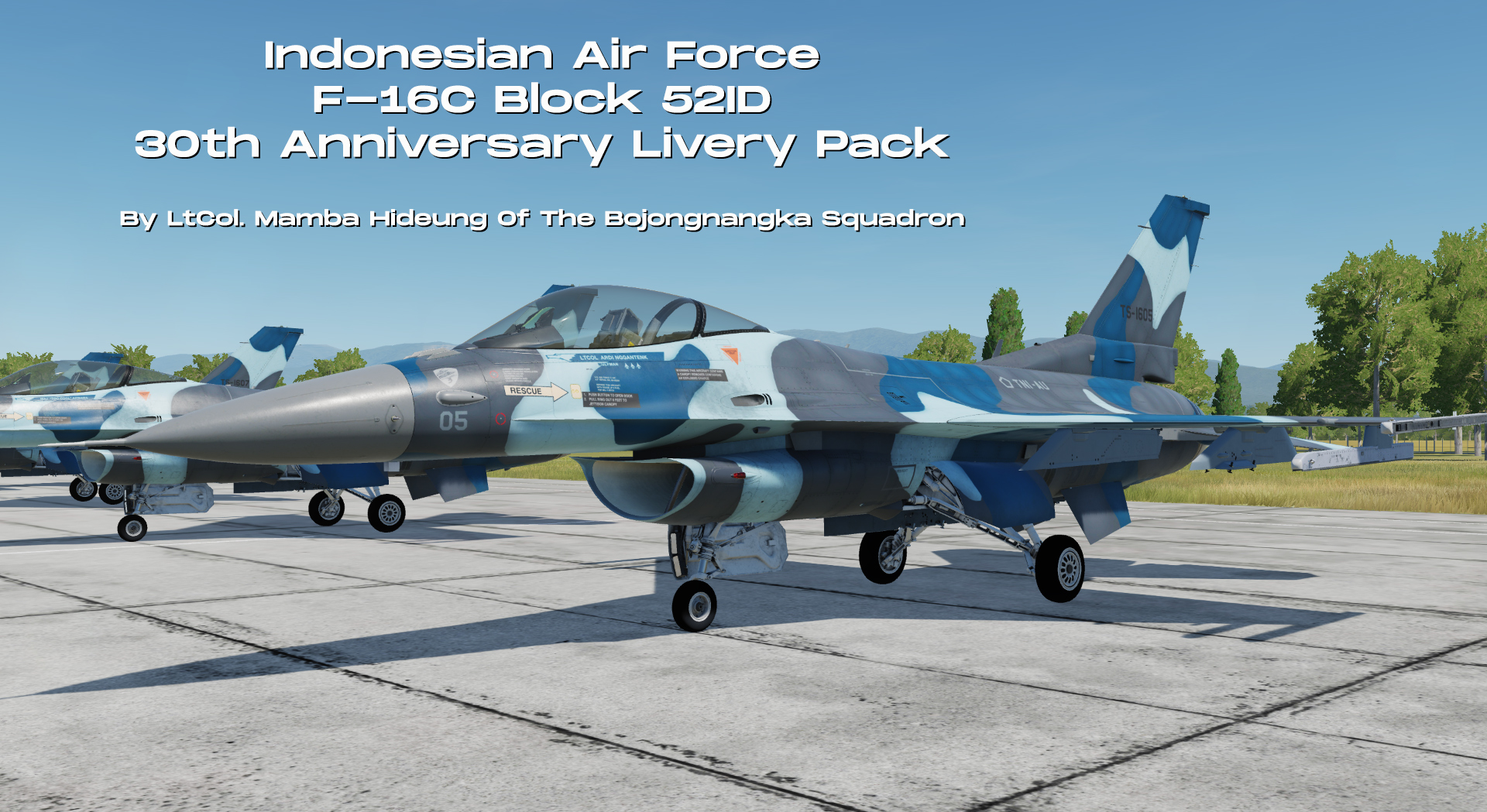 Indonesian Air Force - F-16 Fighting Falcon 30th Anniversary.