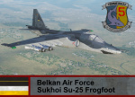 Belkan Air Force Sukhoi Su-25 - Ace Combat (5th FBS)