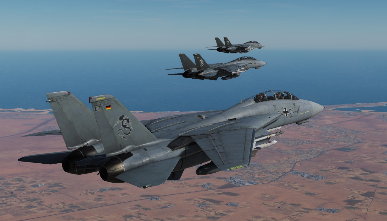 "German Air Force/Luftwaffe F-14B Tomcats ""Mighty Dragons"""