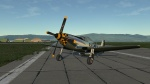 Kimberly Kaye - P51/TF-51 Skin