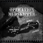 Operation Mudskipper