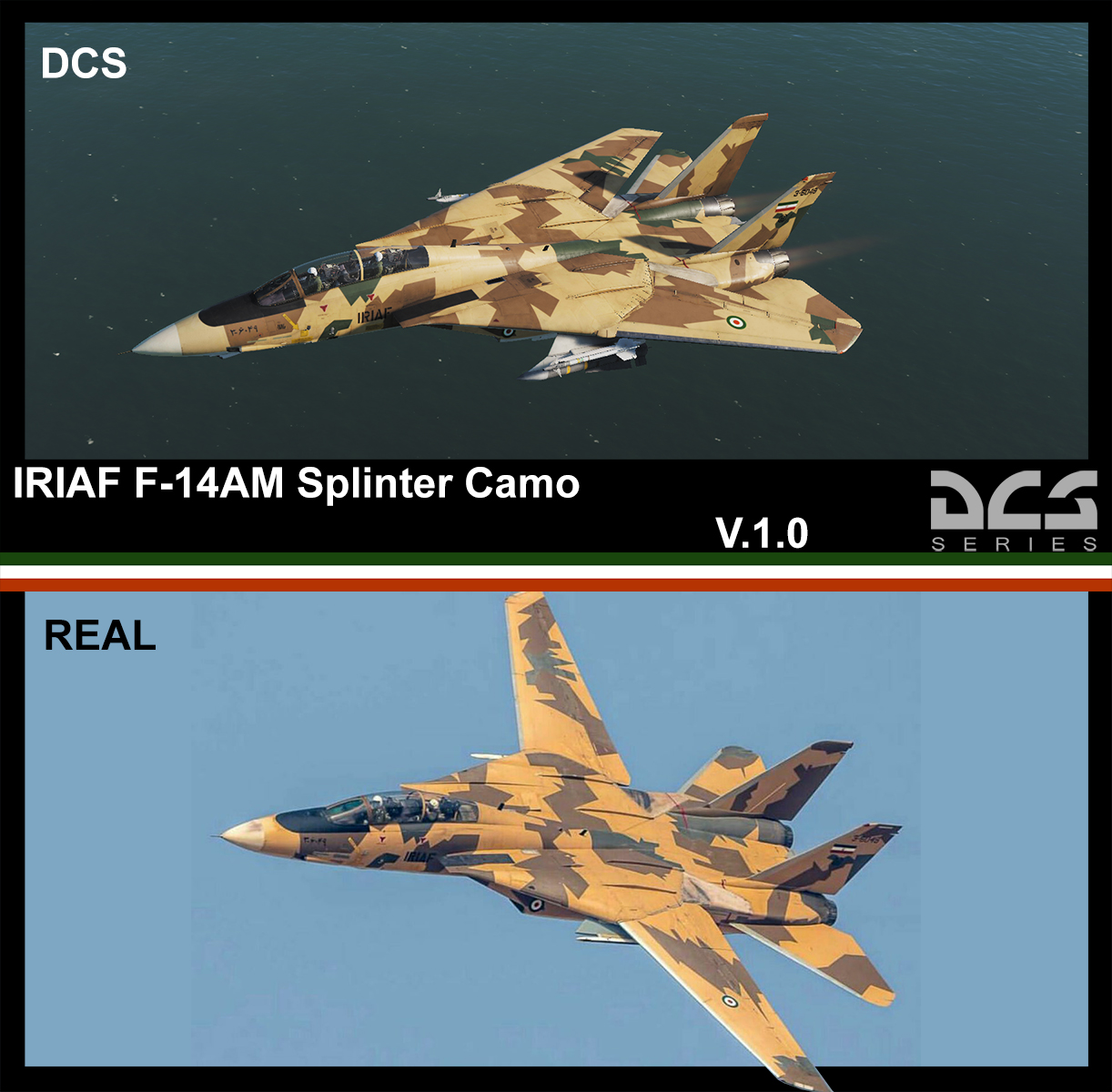 F-14B(AM) Splinter Camo IRIAF [3-6049]  v.1.0 [1/14/2020]