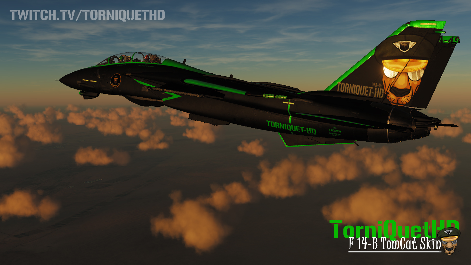 The Official TorniQuet-HD F-14B Skin V3.0