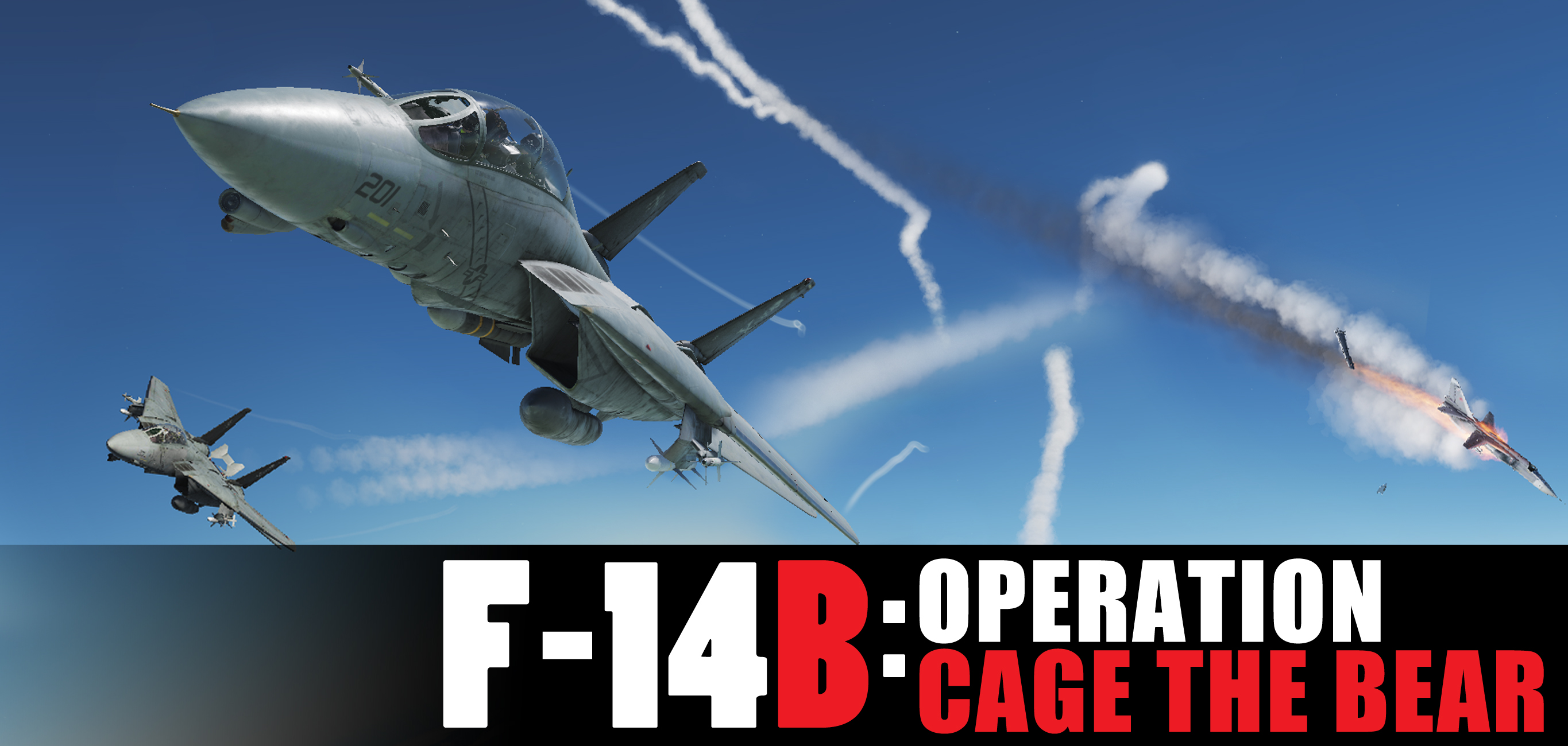 OPERATION : CAGE THE BEAR (F-14B CAMPAIGN)