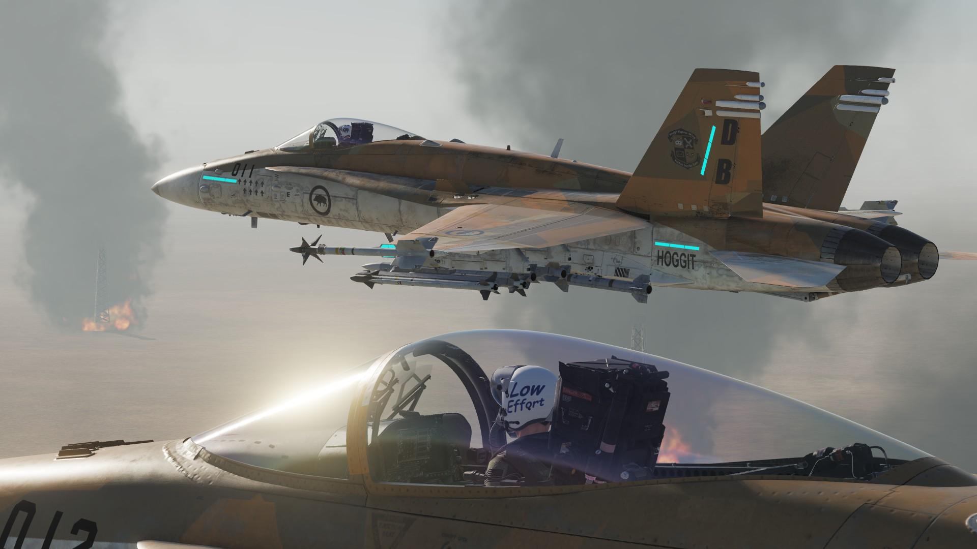 Hoggit Air Force - Desert Hogs (F/A-18C Hornet livery pack)