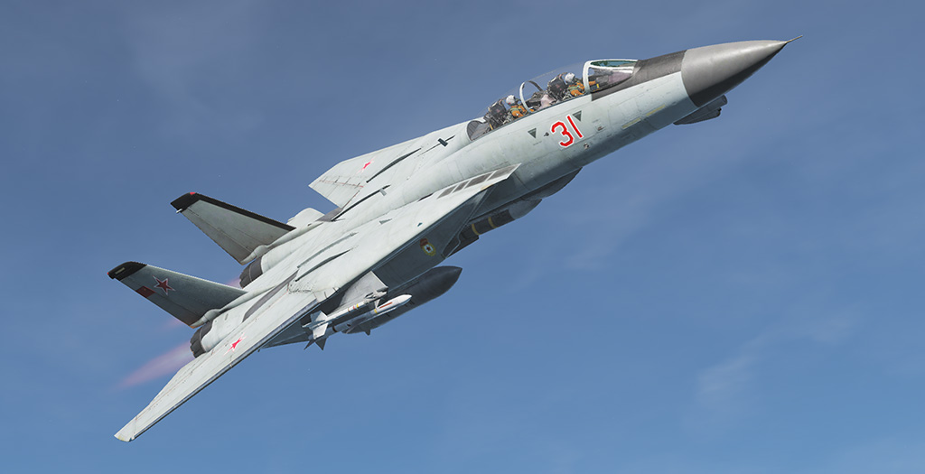 "F-14B ""MiG-31"" Soviet Air Force"