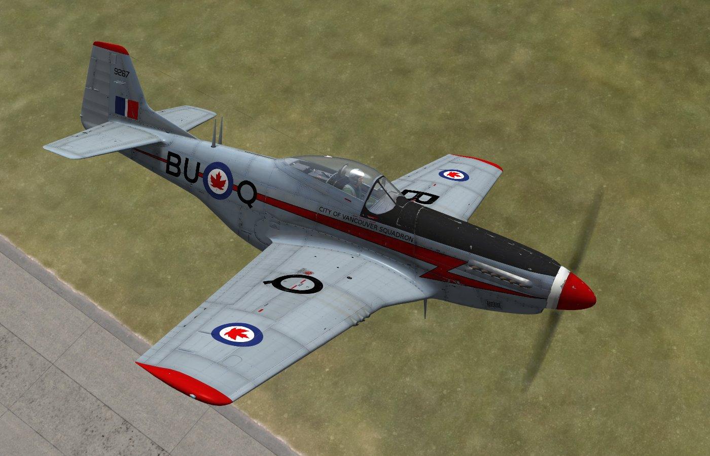 P 51d mustang paint schemes