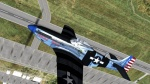 "P-51 Skin ""Fragile but Agile"""