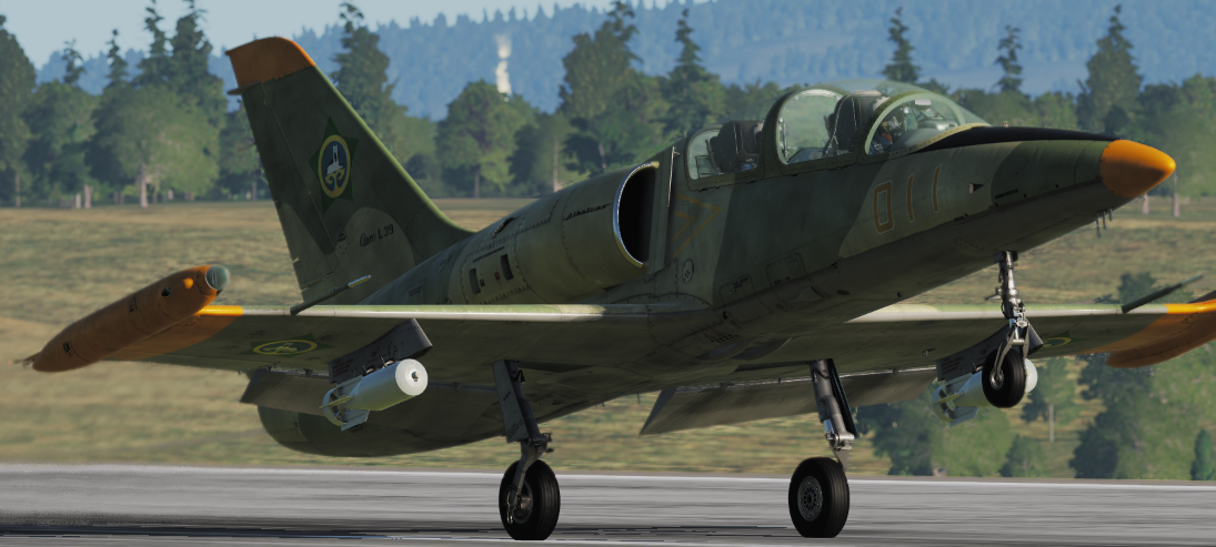 Ichkerian Air Force (2 L-39C skins) *updated 30/4/19*