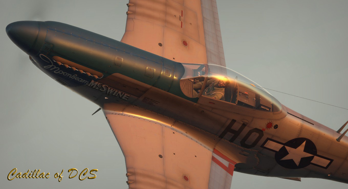 Dcs P 51 High Resolution Wallpapers