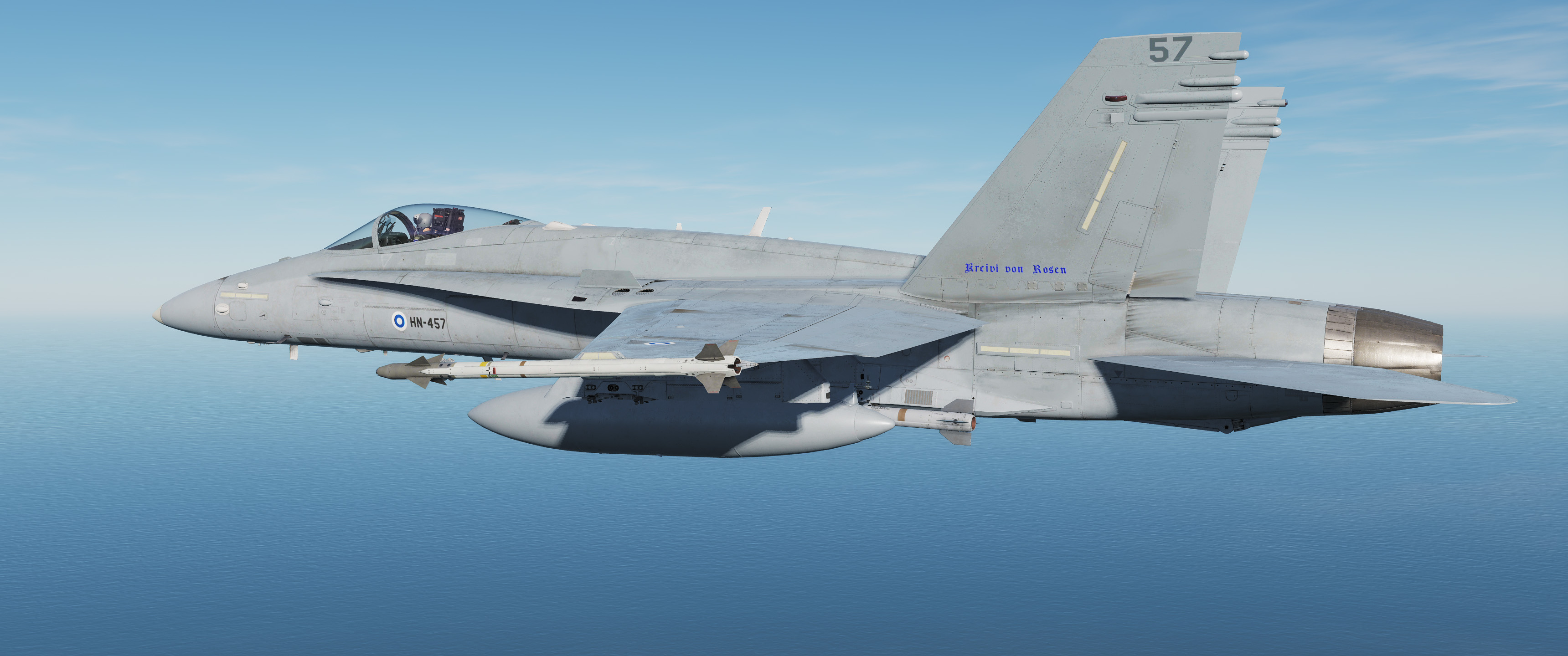 Finnish Air Force F-18C Skin Pack v.1.1