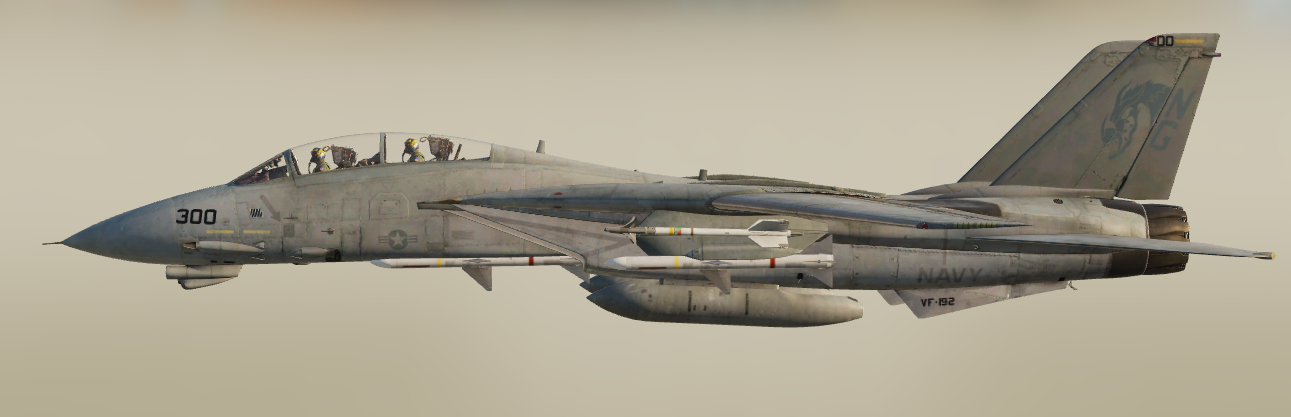 F-14 Tomcat VF-192 Low Vis (Fictional)
