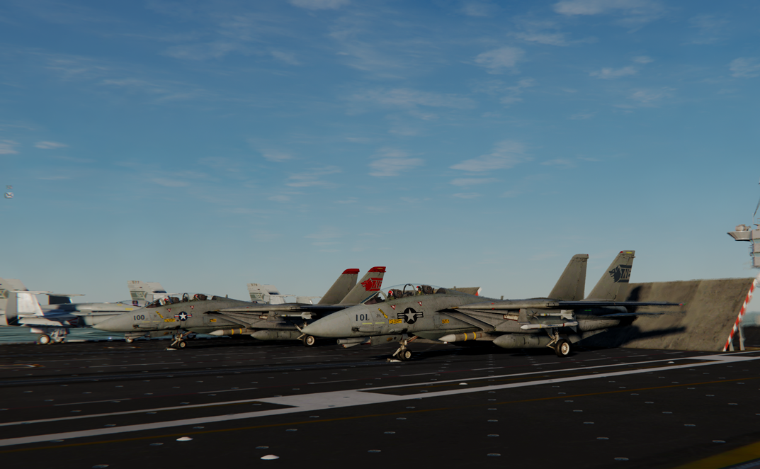 F14-B VF1 Wolfpack 80s Low vis and CAG
