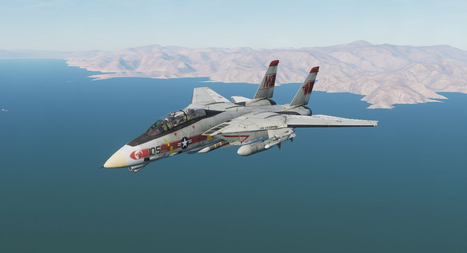 F-14 TOMCAT VF-1 WOLFPACK #105 Early 80s camo.
