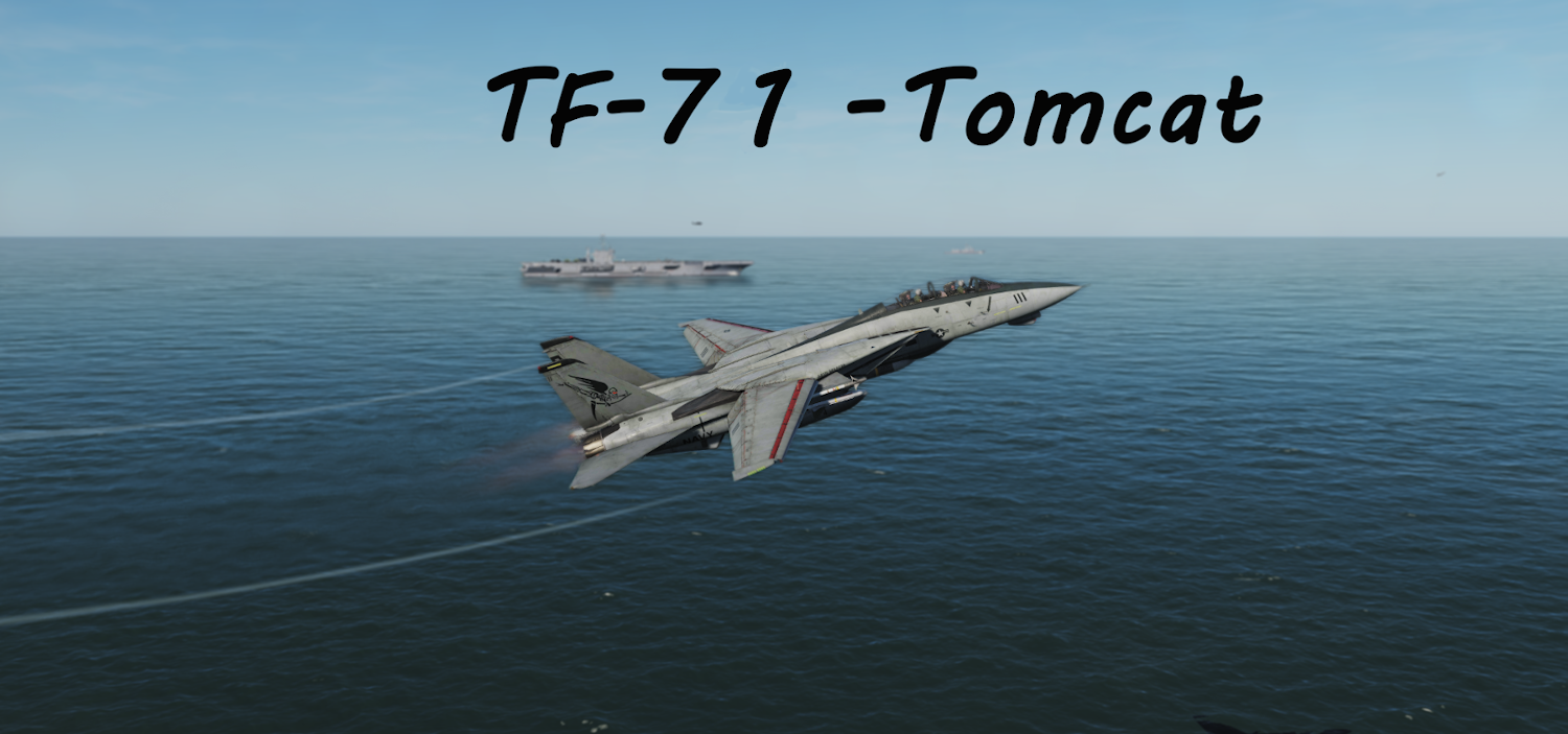 TF-71 Tomcat Super Carrier using Mbot Dynamic Campaign Engine