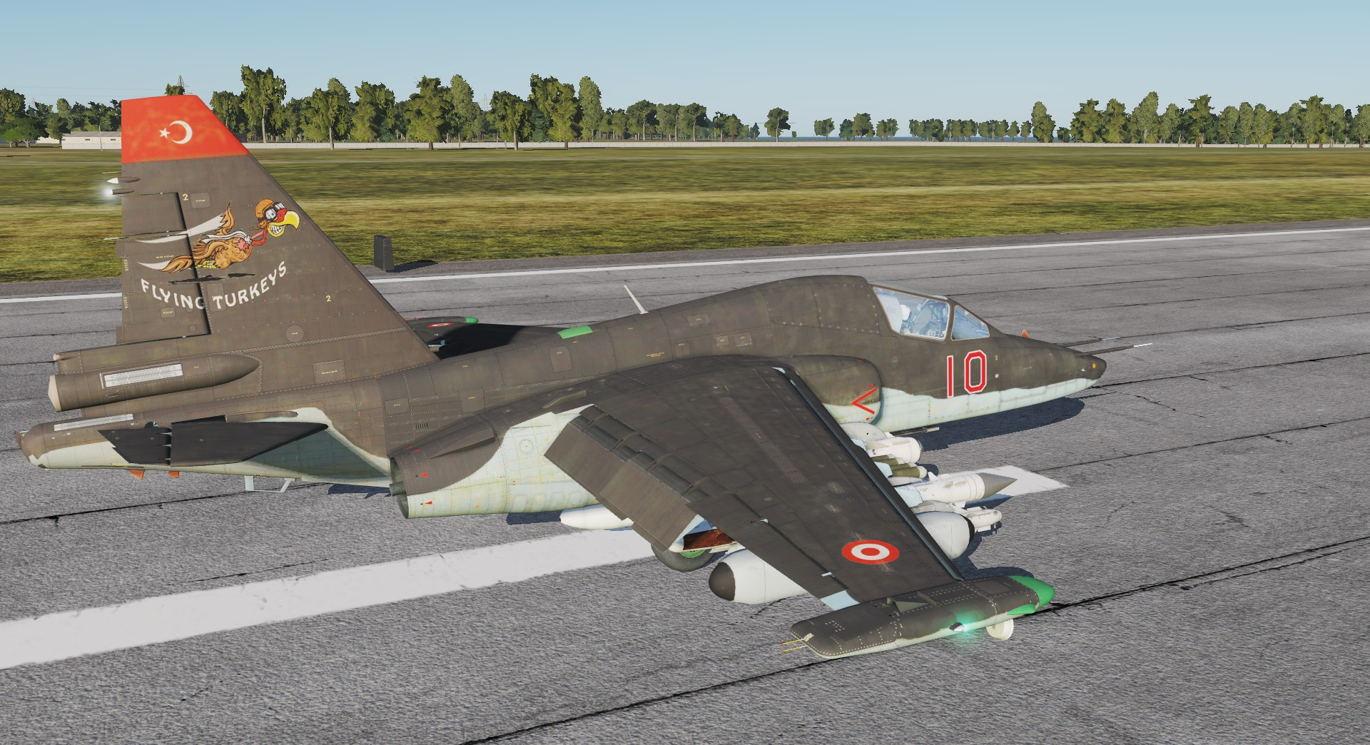 "Su-25T: ""Flying Turkeys"" Liveries (Fictional)"