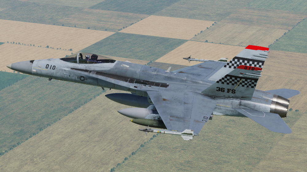 USAF 36th Fighter Squadron Skin for F/A-18C