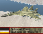 Belkan Air Force Su-33 Flanker-D - Ace Combat Zero