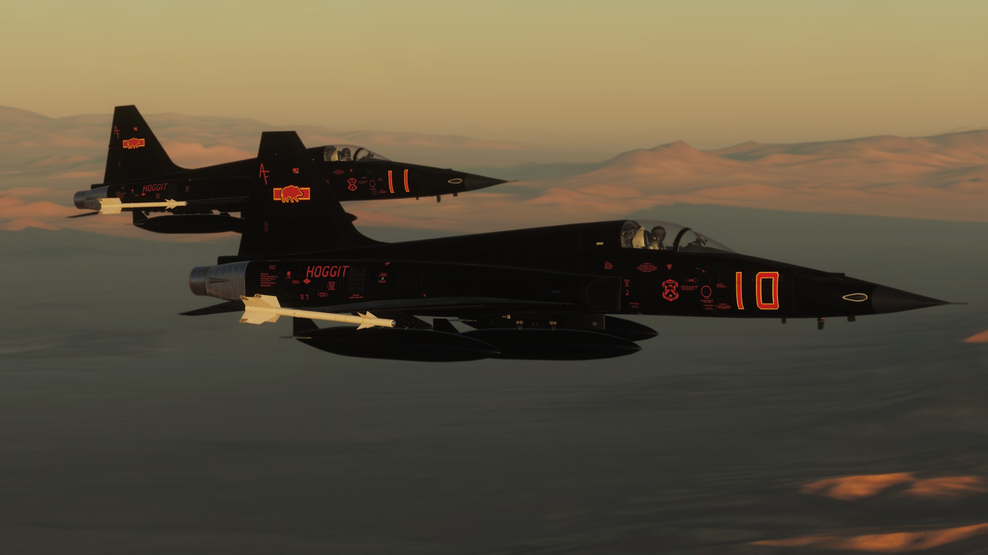 Hoggit Air Force Aggressors - (hoggit themed F-5E-3 livery)