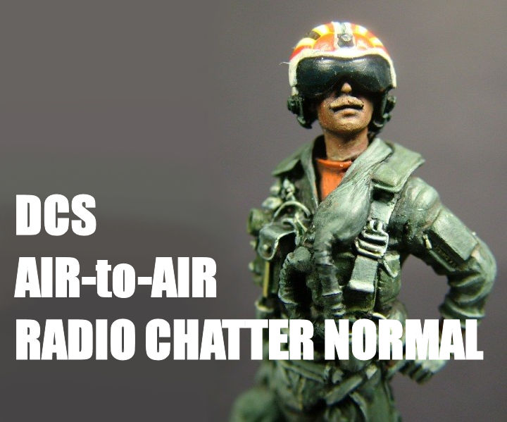 DCS Air-to-Air Radio Chatter Normal