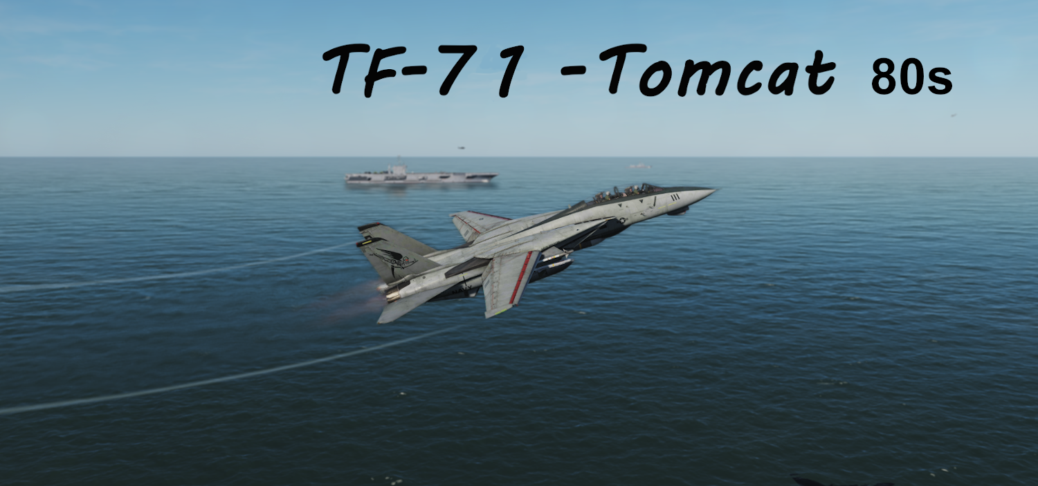 TF-71 Tomcat-80s using Mbot Dynamic Campaign Engine