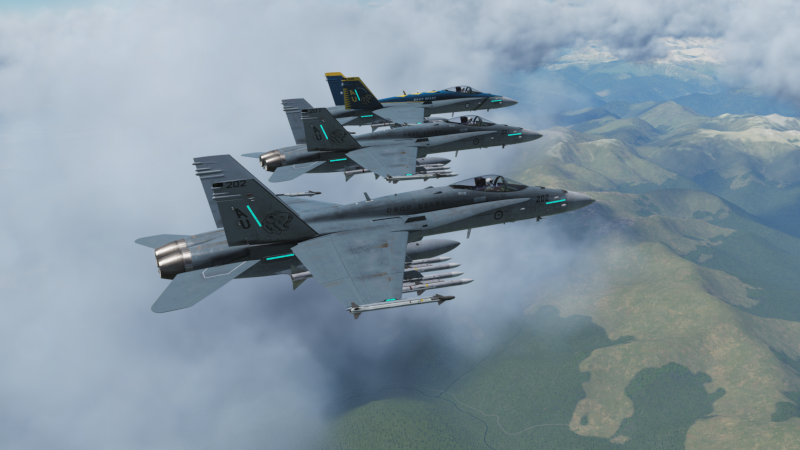 "RAAF F/A-18 ""Drop Bears"" livery Low Vis"