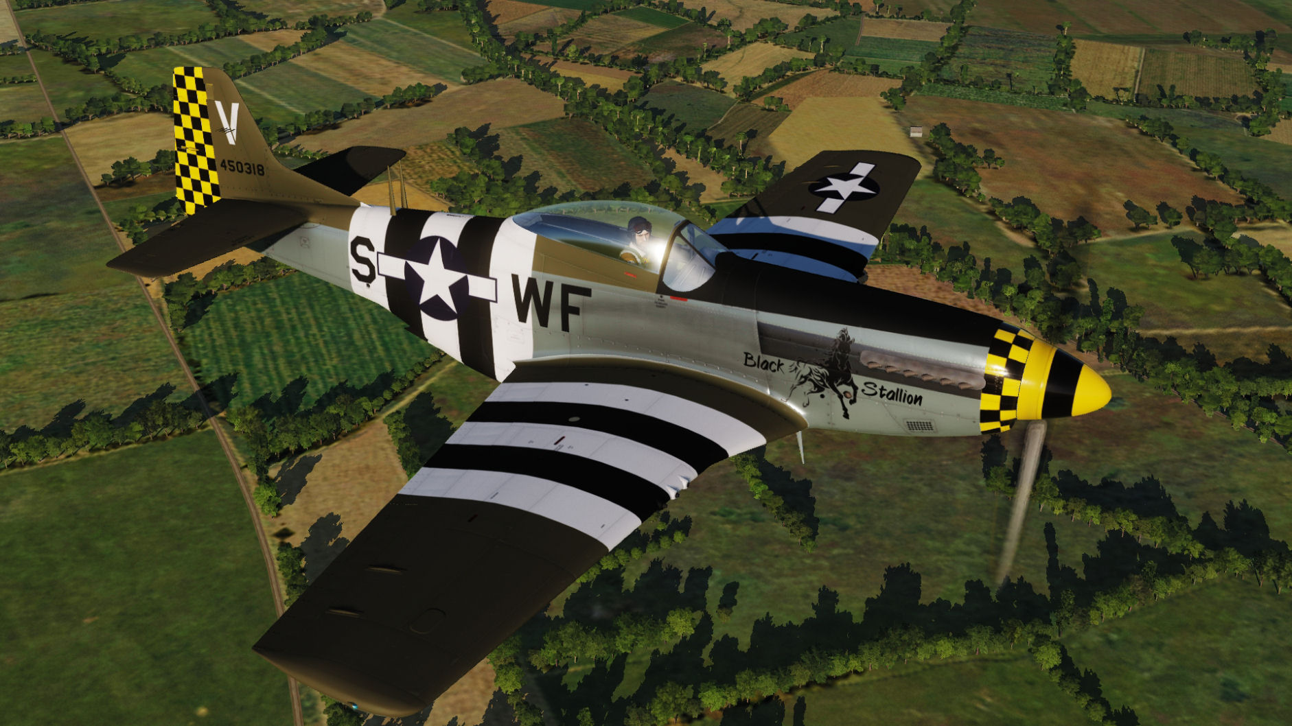 "USAF - ""Black Stallion"" WF-S 44-50318 for DCS World 2.5"
