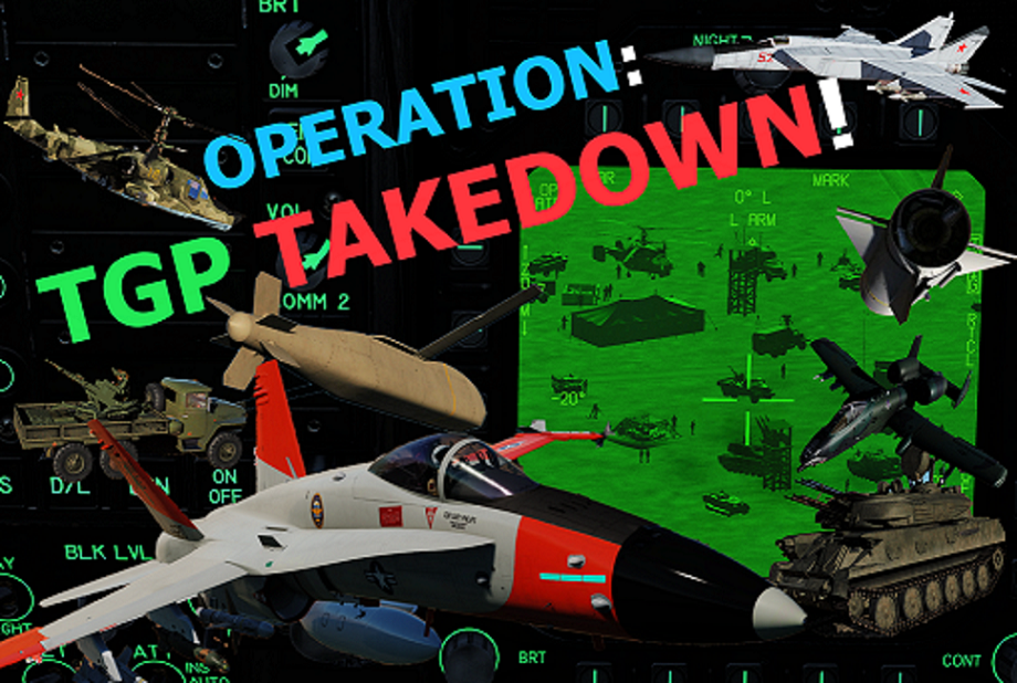 OPERATION: TGP Take Down