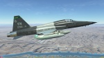 F-5E Tiger II: USAF 80th Flying Training Wing (ENJJPT Wing) T-38C Skin Pack