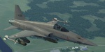 F-5E Ustio Air Force - Galm One -  Ace Combat Zero