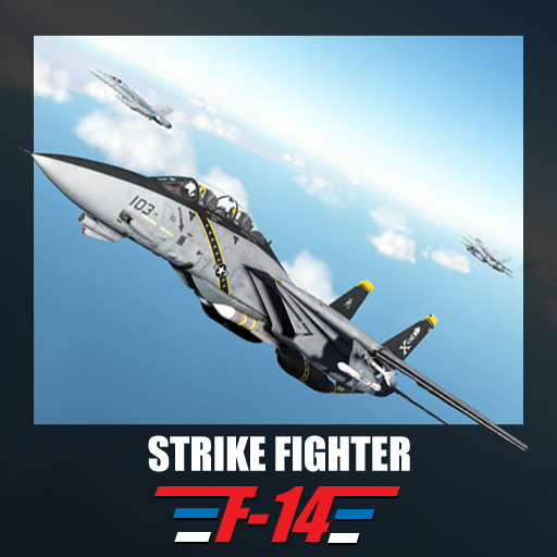 'Strike Fighter' - F-14 mod