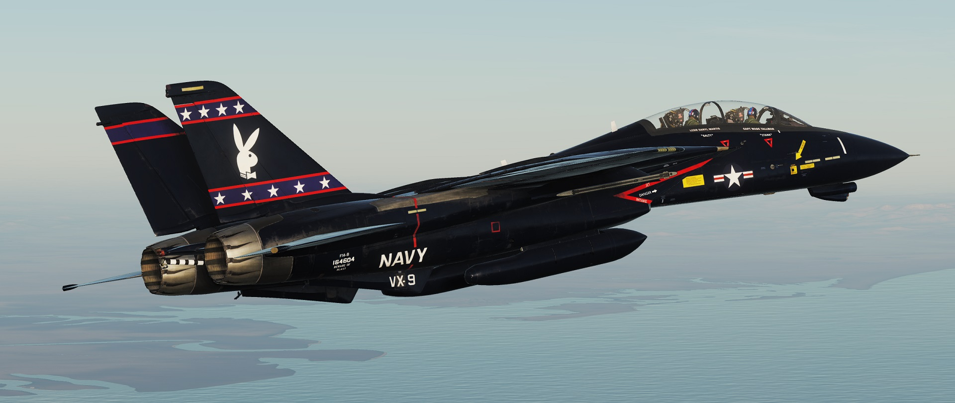 "F-14 VX-9 ""Vandy 1"" Black Bunny v1.1"