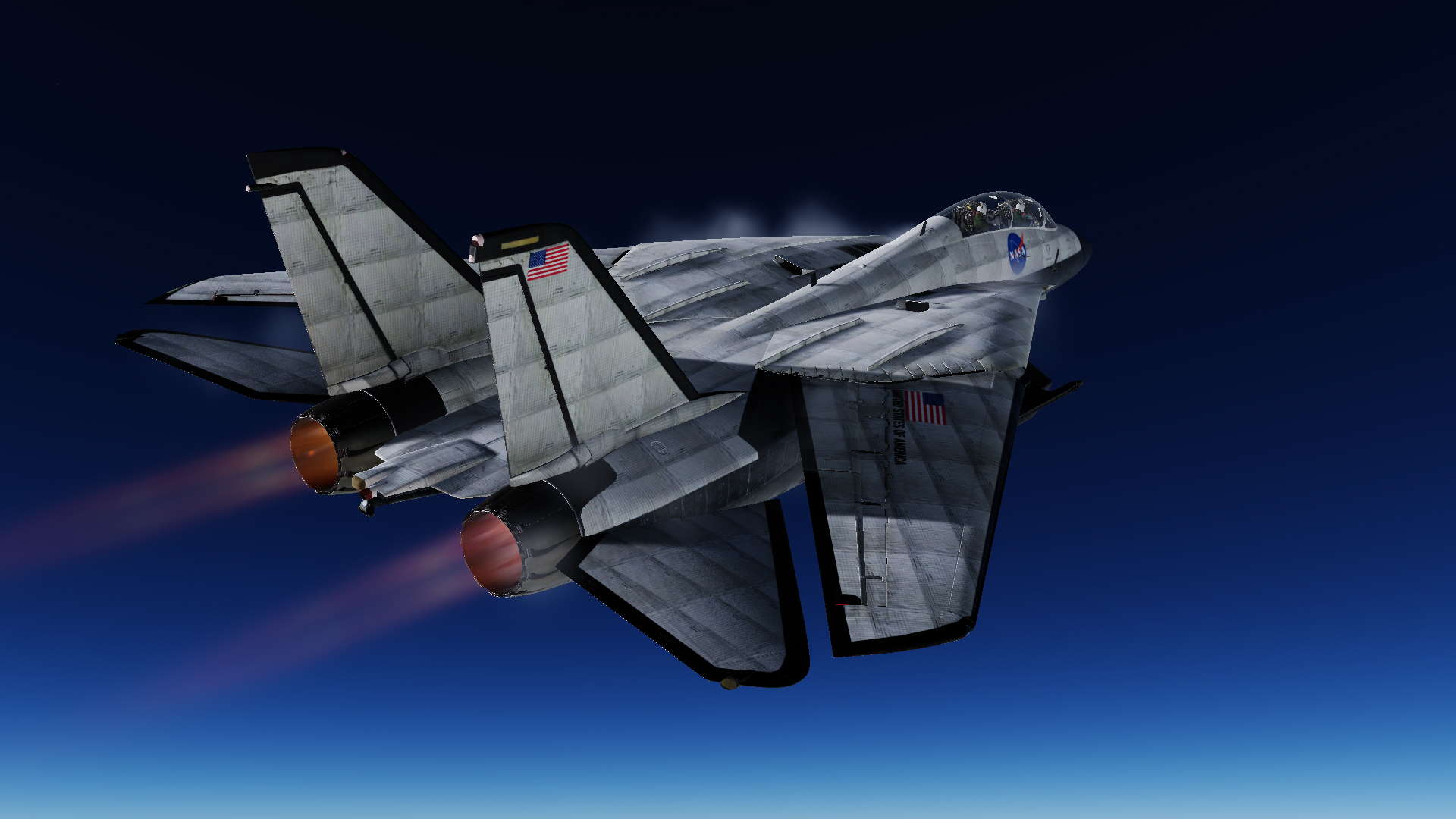 Nasa F-14 space shuttle skin