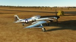 Jnk's P-51D-Bare Metal Shark